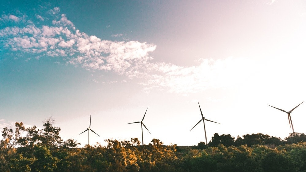 Picture of wind turbines along a pleasant horizon representing analysis of social issues